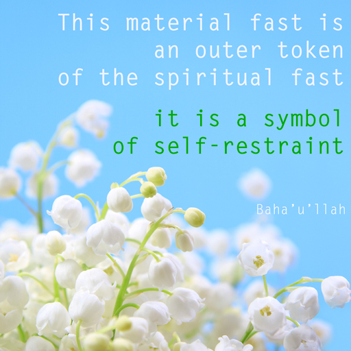 This material fast is an outer token of the spiritual fast