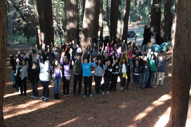 Bosch activities held among Redwood trees