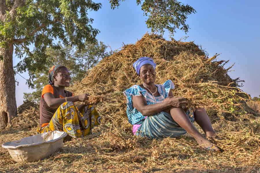 Smallholder farmers in Burkina Faso