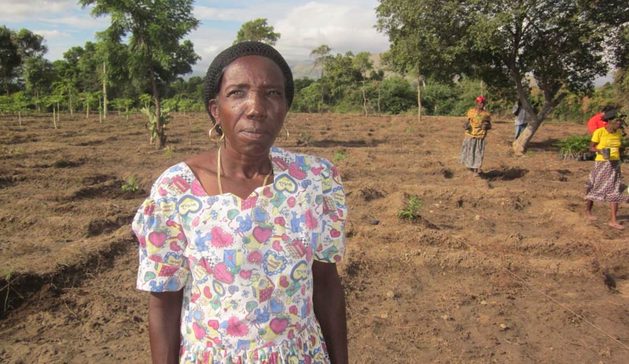 smallholder-farmer-in-benin