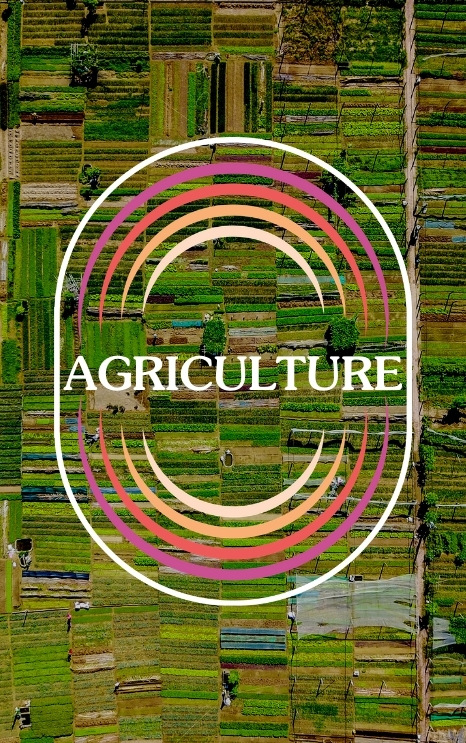 Agriculture's Importance in Rebuilding Our World — with Roy Steiner